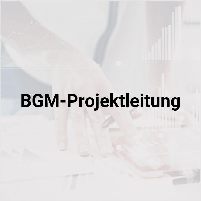 BGM Projektleitung